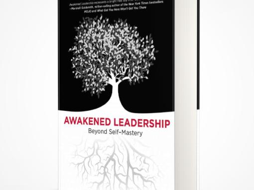 awakened leadership | alan shelton